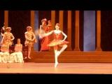 Svetlana Zakharova and Denis Rodkin in Don Quixote  (06.02.16)