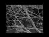 Vinterriket - Eisleere Official Video 2008