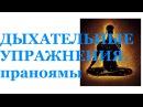 Духание для здоровья Дыхательные упражнения видео Пранаямы Николай Пейчев
