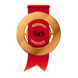 Бронзовая медаль Открытого кубка 5х5