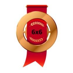 Бронзовая медаль Открытого кубка 6х6