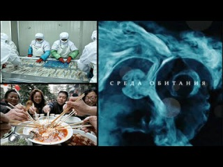 Еда из Поднебесной, Китая [Среда обитания] (Документальные фильмы National Geographic) tlf bp gjlyt,tcyjb̆, rbnfz [chtlf j,bnfy