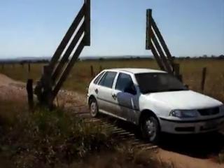 Автоматическая ограда в поле