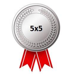 Серебряная медаль Кубка лиги 5х5