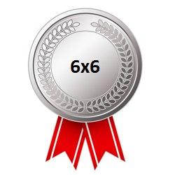 Серебряная медаль Кубка лиги 6х6