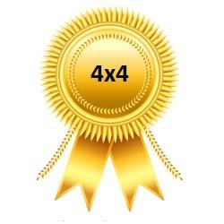 Золотая медаль Чемпионата 4х4