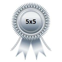 Серебряная медаль Чемпионата 5х5