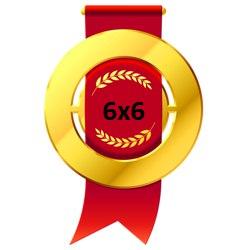 Золотая медаль Открытого кубка 6х6