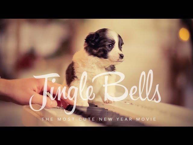 Jingle Bells українською (New Year 2019) – Шпилясті кобзарі (Ukraine)