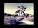 THE JEFFREY LEE PIERCE SESSIONS PROJECT CONSTANT LIMBO CONSTANT RAIN GLITTERHOUSE RECORDS