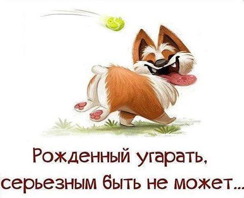 http://cs633424.vk.me/v633424326/24983/k0kgrrqZoI8.jpg