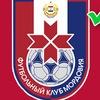 Группа болельщиков ФК «Мордовия» Саранск