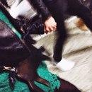 Маро Кекс фото #26