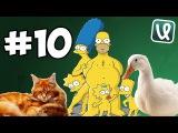 Лучшие Coub'ы недели! #10 Кот против Гуся и немного симсонов !