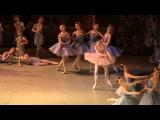 variation of Dulcinea Viktoria Tereshkina Dream of don Quixote 1-03-2016