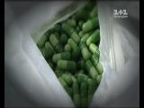 Наркотическая Умань: кто превратил маленький город в крупнейший наркопритон страны? - Гроші