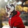 Одежда и обувь для собак ЧудоПИТОМЕЦ