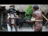 Daily life of Dani Tribe and tribal rituals (the Indonesian province of Papua).