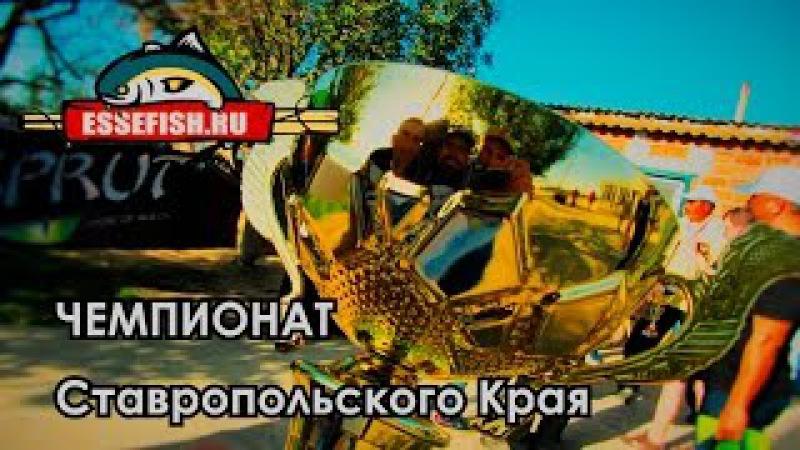 EsseFish. Чемпионат Ставропольского края 2015. Спиннинг с лодок