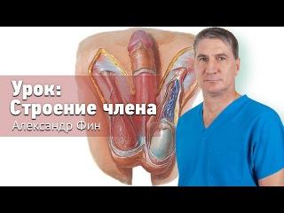 Претърпя операция за удължаване термин в Аркадак