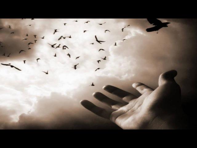 Vitas - Birds have flown awayПтицы улетели