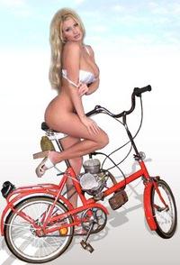 образец паспорт на велосипед - фото 10