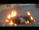 цыгани волгоград жарят свинью на бензин это жесть