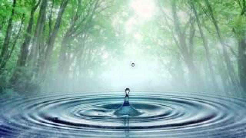 Ваше тело просит воды. Замалеева Г.А.