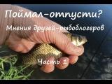 Поймал-отпусти? Мнения друзей-рыбоблогеров: Я, Рыбалка с andrew71tula и Страсти по рыбалке. Часть 1