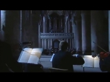Ralph Vaughan Williams - Fantasia on a Theme by Thomas Tallis - Andrew Davis