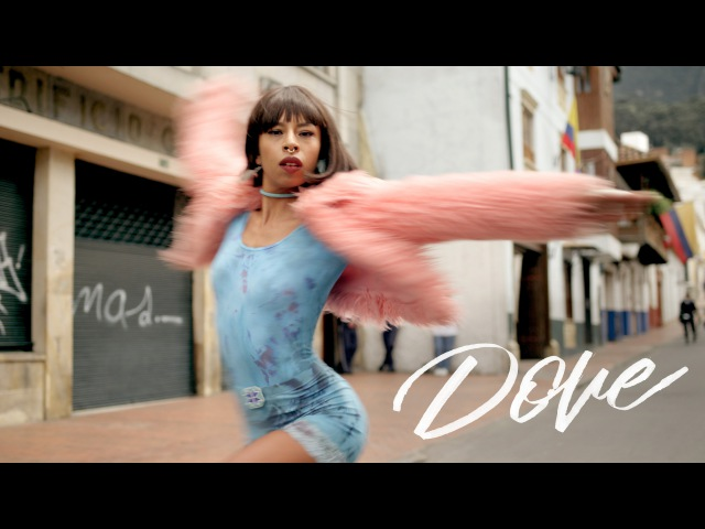 Pillar Point Dove OFFICIAL MUSIC VIDEO