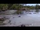 НОВИНКА! Необъяснимое явление природы! Смотреть интересное видео, удивительное и невероятное Непоз