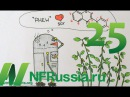 №25 Облегчает ли соя приливы при менопаузе Доктор Майкл Грегер русская озвучка