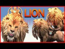 Lion King Finger Family Collection Nursery Rhymes | Dinosaurs Finger Family Short Movies In 3d