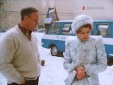 Снегурочку вызывали? (1985).
