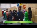 Служба новостей Город от 17 12 2015 online video