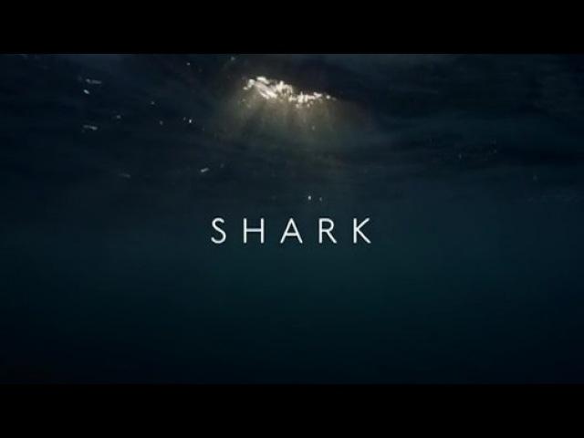 BBC Вся правда об акулах. Фильм 1 / Shark (2015)