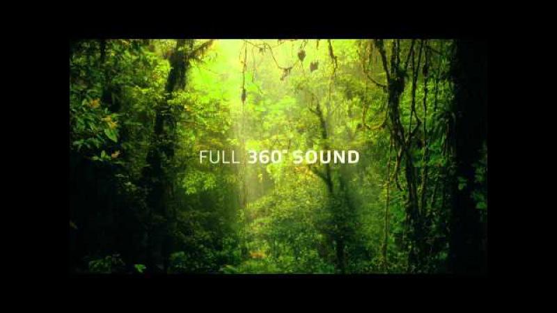 Dolby Atmos: Amaze | Trailer | Dolby
