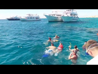 Paradise Island, Hurghada, Egypt (February 2016) Райский остров,Хургада,Египет(февраль 2016
