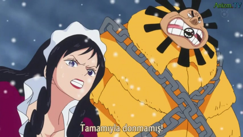 One Piece Doflamingo vs Aokiji TR