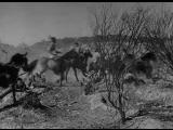 Нападение команчей на перегонщиков скота (Техасцы)