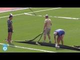 Вклейка разметки и внесение песка в новый газон стадиона