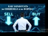 Как можно легко заработать на опционах и Форекс Пошаговое руководство