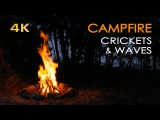 4K Campfire by the Sea - Crickets &amp Ocean Waves - Night Forest Nature Sounds - Relaxing Fireplace