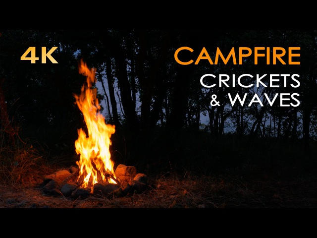 4K Campfire by the Sea - Crickets Ocean Waves - Night Forest Nature Sounds - Relaxing Fireplace