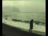 Когда уходят киты - музыка Эдуарда Артемьева (4)