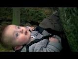 Не все собаки кусачие / Some Dogs Bite / Baby Brother (Великобритания, 2010)