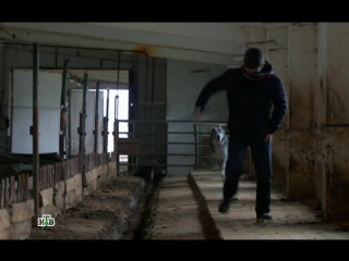Паутина 8 сезон 3 серия