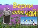 Целое поле здоровья. Верни себе чай! | Pravda GlazaRezhet