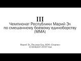 Чемпионат РМЭ по MMA - 2016. Официальный видео-отчет